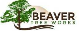 Beaver Tree Works Safe Tree Removal Trimming, Pruning,